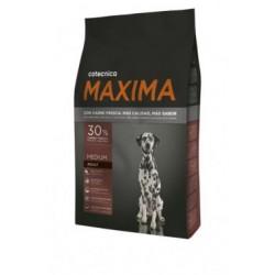 Cotecnica maxima medium adult