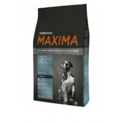 Cotecnica maxima maxi adult