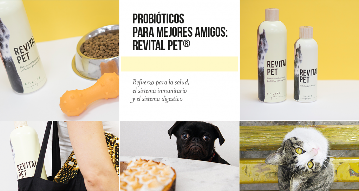 REVITAL PET Ecological pribiotic to strengthen the health, immune system and digestive system of our pet.